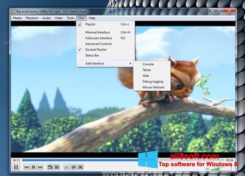 צילום מסך VLC Media Player Windows 8